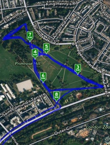 The Primrose Hill bit of my run. It's hard to see the various loops as they overlap but gives you an idea of the park